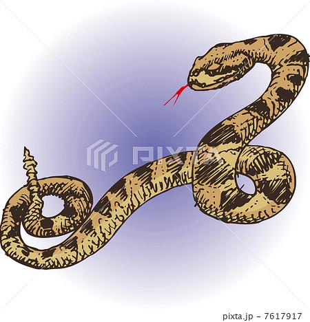 ガラガラヘビ 7617917