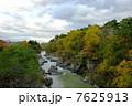 渓谷 厳美渓 磐井川の写真 7625913