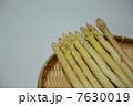 ホワイトアスパラ 7630019