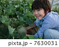 メロン畑と男の子 7630031