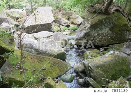 麗谷渓谷(うつくしだにけいこく)入り口あたりの川の流れ 7631180