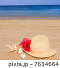 海岸 麦わら帽子 ビーチの写真 7634664