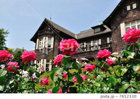 旧古河庭園の薔薇 7652330