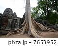 世界遺産 遺跡 カンボジアの写真 7653952