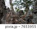 カンボジア アンコールワット 遺跡の写真 7653955
