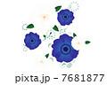 冬の花 7681877