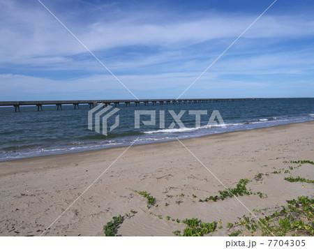 世界一長い桟橋 7704305