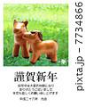 草原の仔馬の親子 年賀状テンプレート2014年 午年 手作り人形 7734866