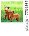 草原の仔馬の親子 2014年 午年 年賀状  手作り人形 7734867