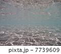 海の中 7739609