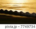 黄昏の川面 7749734