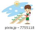 家庭菜園 菜園 畑のイラスト 7755118