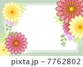 花 華 7762802