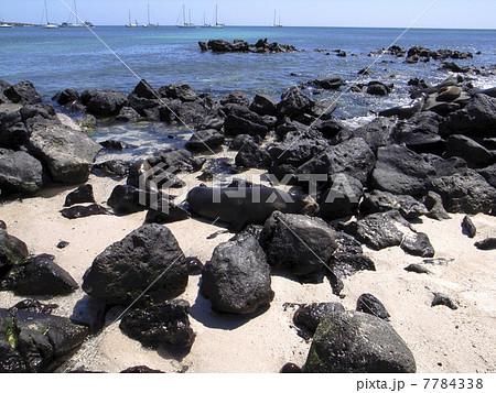 ガラパゴス諸島 7784338