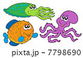 タコ たこ 蛸のイラスト 7798690