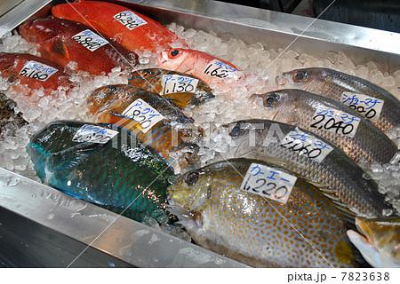 沖縄の鮮魚 7823638