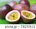 パッションフルーツ 果物 トロピカルフルーツの写真 7825913