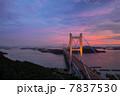 瀬戸大橋ライトアップ 7837530