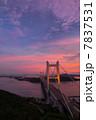 瀬戸大橋ライトアップ 7837531
