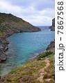 小笠原諸島 南島 海の写真 7867568