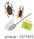 昆虫採集 7877835
