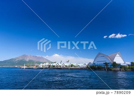 桜島と鹿児島水族館 7890209
