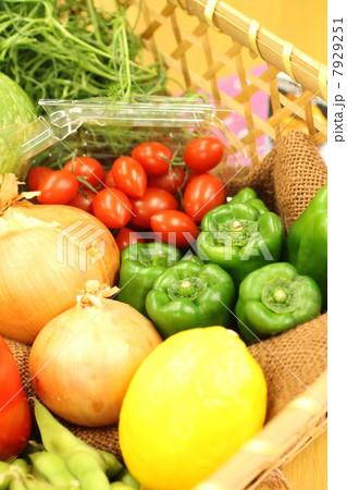 野菜集合写真 7929251