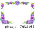 花の枠・菖蒲 7938165