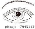 ベクター 瞳 眼のイラスト 7943113
