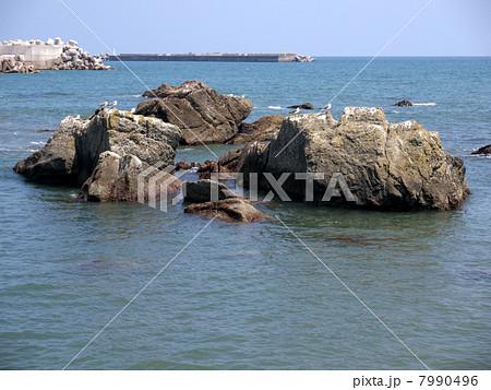 黒生海岸 7990496
