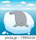 Happy Seal 7994416