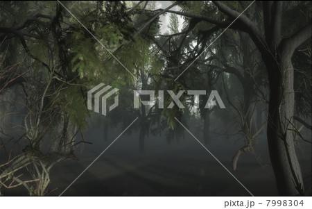 暗い森 7998304