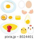 目玉焼き ゆで卵 ベクターのイラスト 8024401