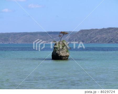 沖縄の小島 8029724