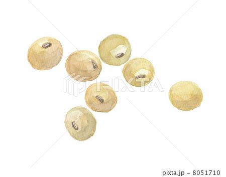 大豆 8051710