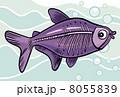 動物 サカナ 魚のイラスト 8055839