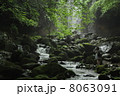 横谷渓谷 乙女滝 川の写真 8063091