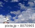 ペガサス 8070965