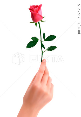 Hand holding red rose 8074715