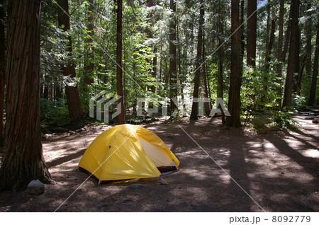 ヨセミテ国立公園でのキャンプ 8092779
