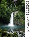 浄蓮の滝 8113202