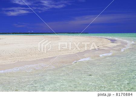 浜島 8170884