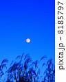 晩秋 ススキ 満月の写真 8185797
