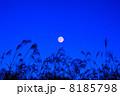 ススキと満月 8185798