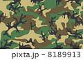 迷彩の背景素材1 8189913