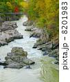 厳美渓 渓谷 川の写真 8201983