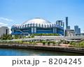 大阪ドーム 京セラドーム 球場の写真 8204245