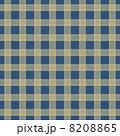 チェックのパターン 8208865