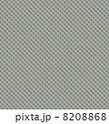 チェックのパターン 8208868