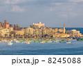 海景 アレキサンドリア アレクサンドリアの写真 8245088